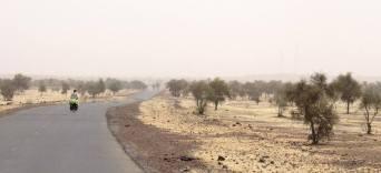 mauritania (122)
