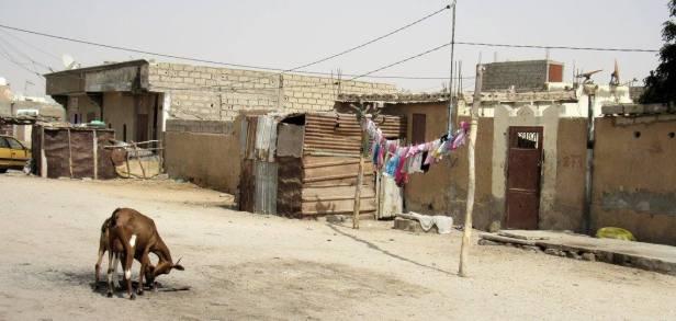 mauritania (67)