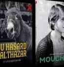 Au hasard Balthazar et Mouchette, deux Bresson majeurs en DVD et blu-ray en mars