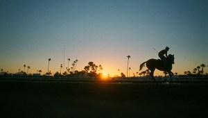 Sundance: Sony Pictures Classics se hace con el drama deportivo «Jockey»