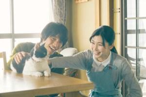 【画像】映画『旅猫リポート』場面カット2