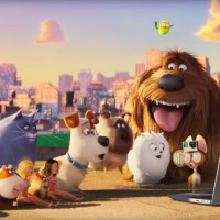 Animal characters are the stars in 'The Secret Life of Pets'