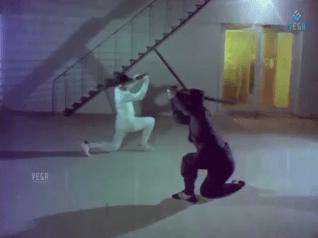 Roshagadu-Ninja