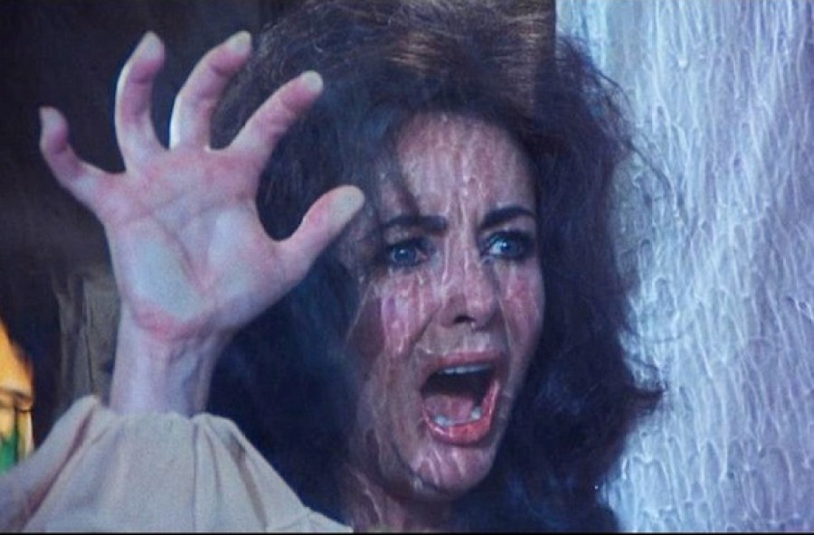 Night Watch (1973) avec Elizabeth Taylor
