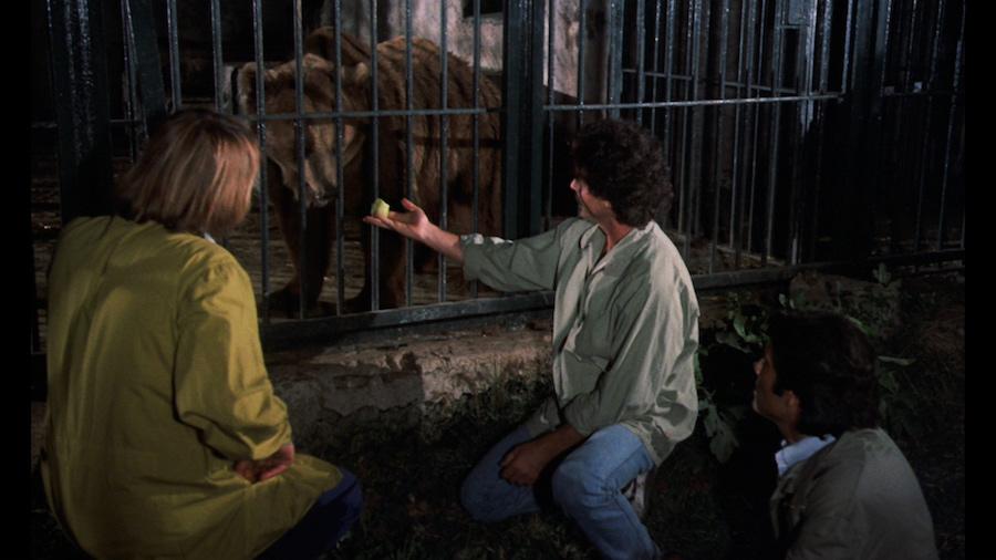Wild Beasts – Belve feroci / Les bêtes féroces attaquent (1984)