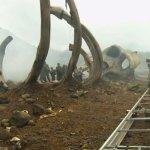 'Kong: Skull Island': Primera Imagen Oficial del Reboot