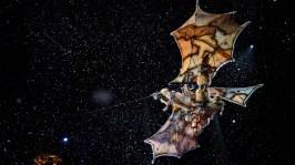 Mondi Lontani, Cirque du Soleil 5