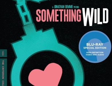 Something-Wild-cover