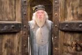 Michael Gambon dans Harry Potter et l'ordre du Phénix (2007)