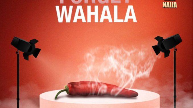 bbnaija forget wahala