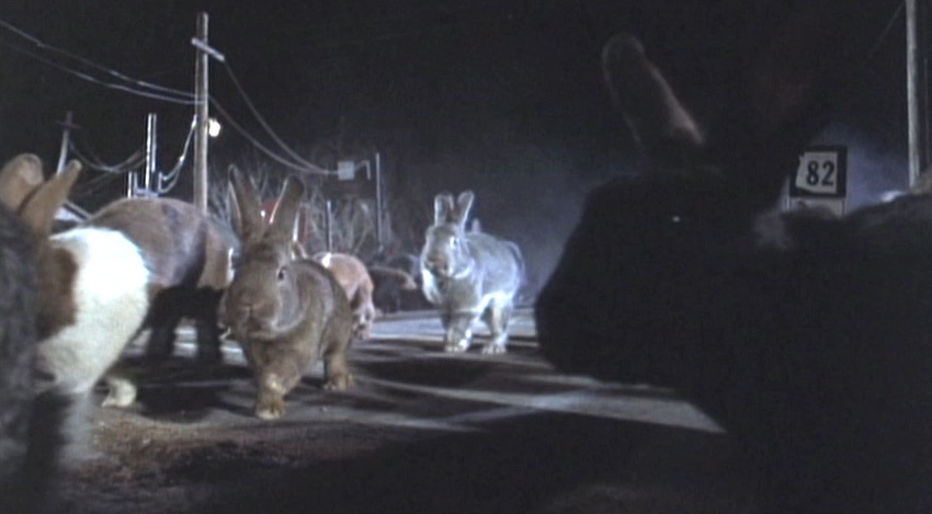 Night of the Lepus (1972) | Cinemassacre Productions
