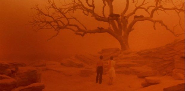 cat-people-1982-nastassja-kinski-malcolm-mcdowell-panthers-in-trees-dream.jpg