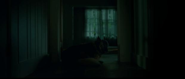 Screen Shot 2018-12-31 at 10.41.05 am