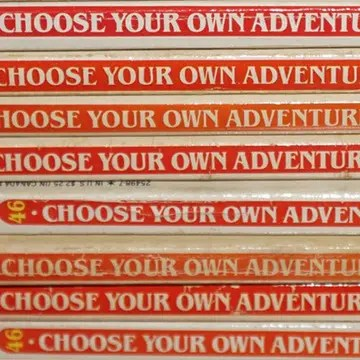 Choose Your Adventure Pic