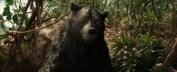 "Baloo in the Netflix film ""Mowgli: Legend of the Jungle"""