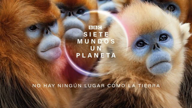 póster de la serie siete mundos, un planeta