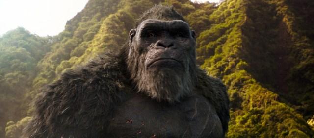 Godzilla-vs-Kong-5.jpg