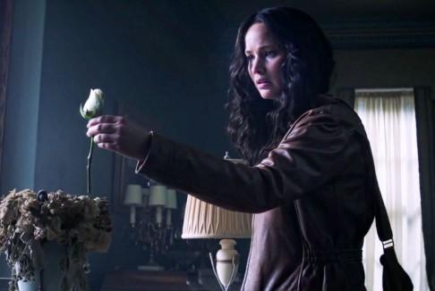 Am primit un trandafir alb. Hunger Games.