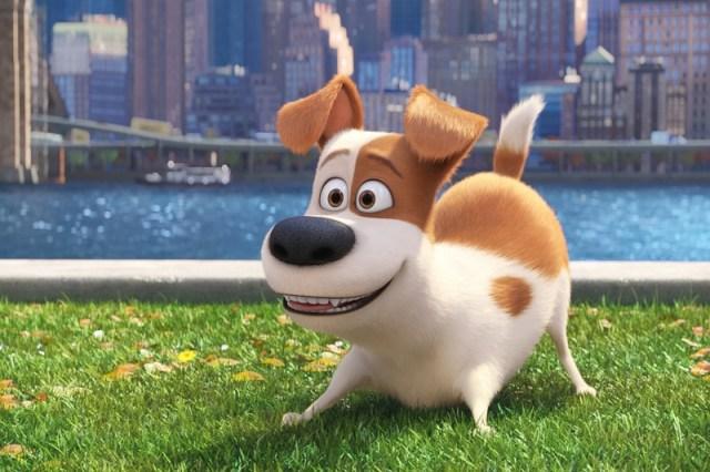 El este Max, personajul principal.