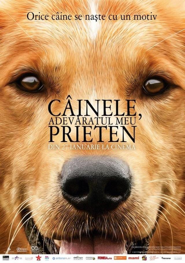 A dog's purpose – Cainele adevaratul meu prieten