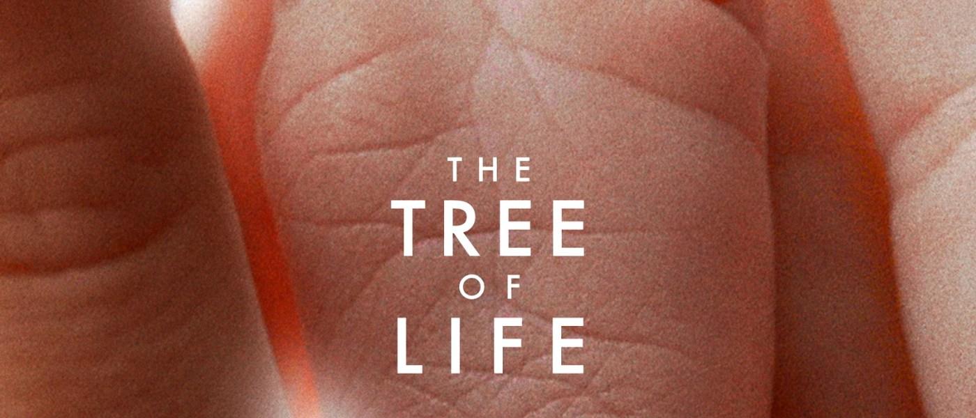 Crítica: A Árvore da Vida