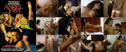 Angelfist (1993) Poster - Free Download & Watch Full Movie @ cinerotic.net