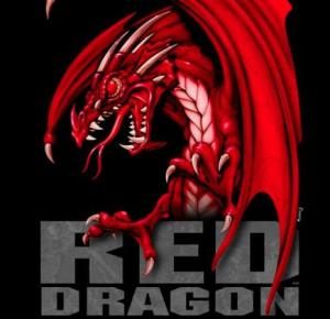 RED Dragon Update
