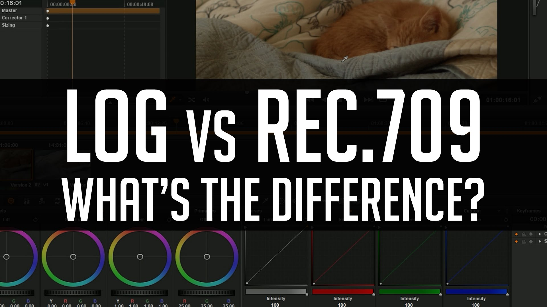 Log LUTs vs  709 LUTs - What's The Difference? from Casey Faris