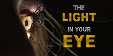Dedolight Presents The Light in your Eye, a Look at the Eye Light
