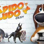 """""""Ozzy rápido y peludo"""", una película para dogfans #Reseña"""