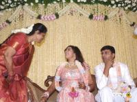 Meena Marriage Reception Photos (29)