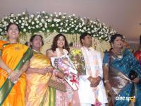 Meena Marriage Reception Photos (33)