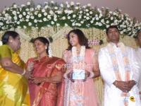 Meena Marriage Reception Photos (7)