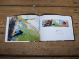 Vrai-sans-blanc-(book-cover-2015)-2