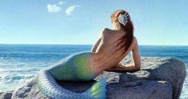 Sirenas ¿reales o falsas?