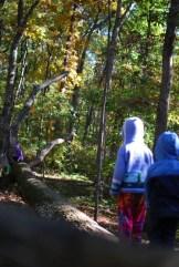 Walking the log bridge.