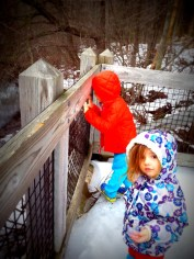 Hemlock Crossing Nature Center
