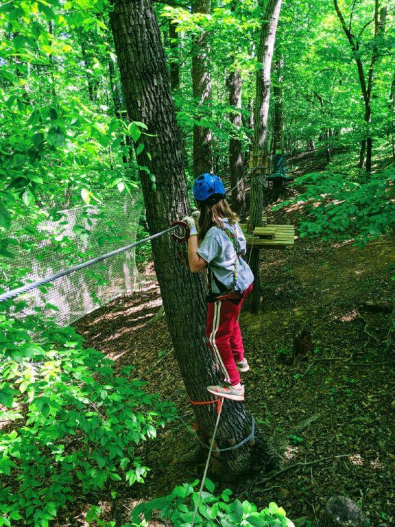 Silas navigates a tightrope.