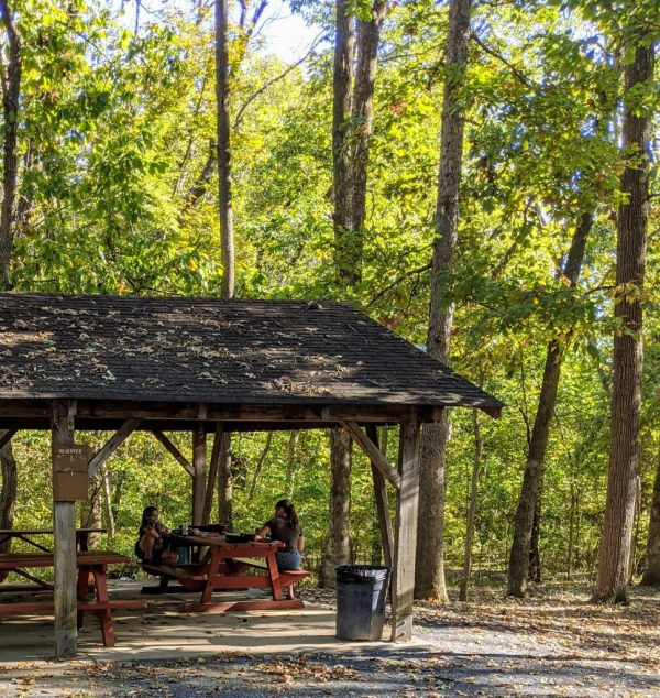 A picnic shelter, with a boy and a young woman playing ukuleles inside.