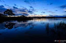 While we were waiting for a platypus to show up, there was some time to appreciate the magnificent dawn...