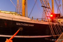 Our Southern Swan