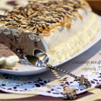 Ice Chocolate - Praline Torte
