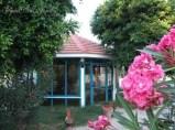 Gazebo in a garden