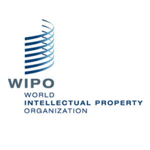 Senior Advisor, IP And Gender @WIPO