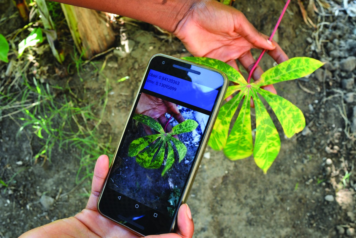Innovation Technology:Diagnosing diseases with a smartphone
