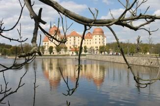 The castle of Moritzburg.