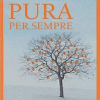Titolo dello spettacolo con sotto il disegno di un albero privo di foglie ma con frutti arancioni