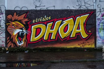 dhoa@zaarphotography