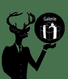 serveur cerf galerie2.png