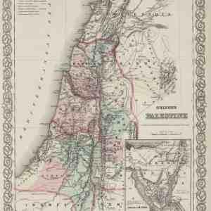 #3977 Palestine (modern-day Israel), 1874
